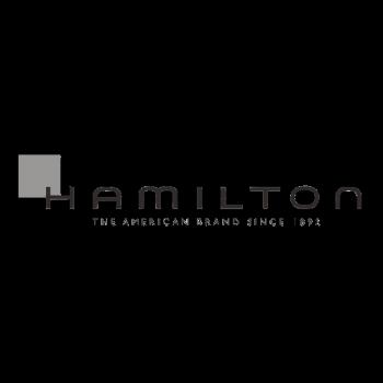 Concesionario Oficial Hamilton